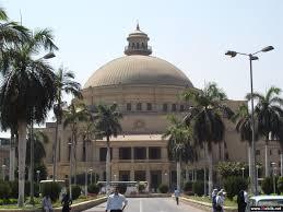 ماجستير مهني من جامعة القاهرة