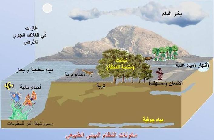 البيئه والنظام البيئى