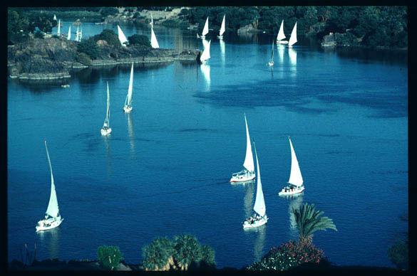النيل حياة نهر