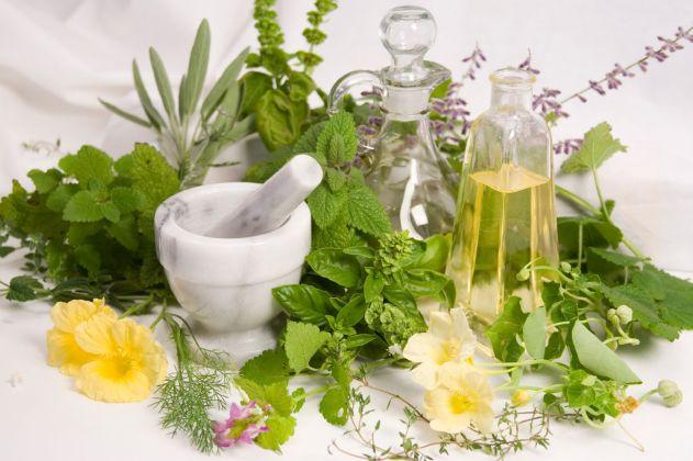 العلاج بالأعشاب