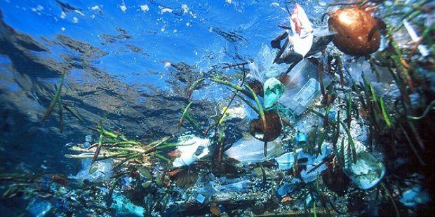 تلوث البيئة البحرية