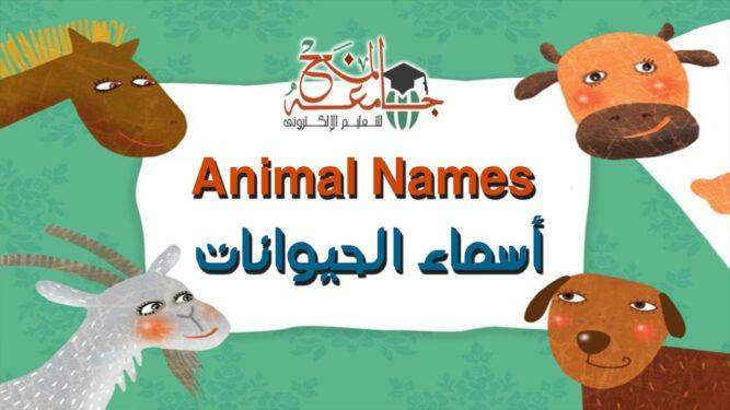 اسماء الحيوانات بالانجليزي